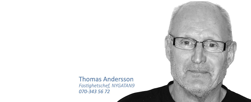 thomasandersson_850x345